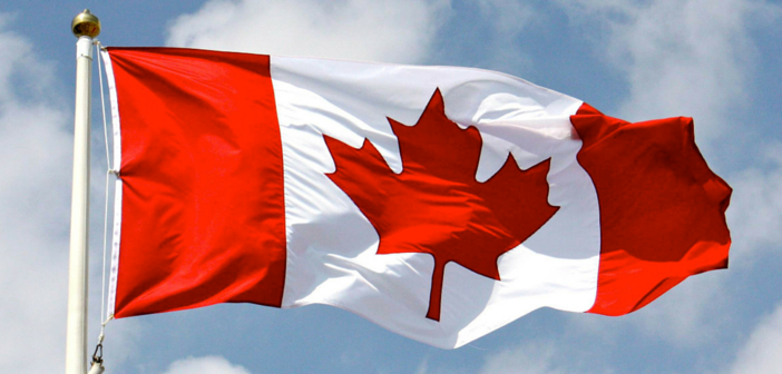Canadas flag – The Mable Leaf